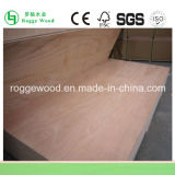 Madeira compensada comercial / Bintangor Plywood / Okoume Plywood