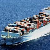 O melhor agente de frete do transporte do oceano de China à zona franca dos dois pontos