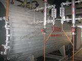 caldeira de vapor Gas-Fired da água 10t quente