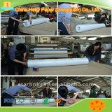 Kleid 80g CAD-Plotter-Papier-bester Verkauf