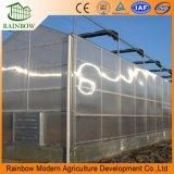 Hoja de sol Hoja de placa de PC de invernadero para plantas