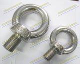 Roestvrij staal AISI 304 of de Bouten en de Noten van het Oog AISI316