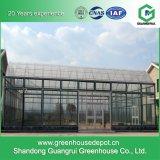 Estufa de vidro inteligente para a plantação vegetal moderna