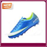 スポーツのサッカーはフットボールの靴に卸しで蹄鉄を打つ