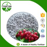 De In water oplosbare Meststof NPK van de fabrikant NPK 15-15-30