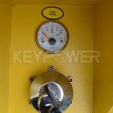 225kVA leiser Typ Energien-Motor-Dieselgenerator-Set