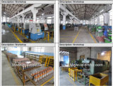 Changchai One Cylinder Engine 12V 0.8kw 9t Motor Starter (QD1109)