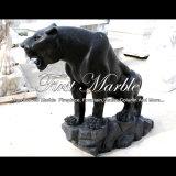 Animale nero di Empador per la High School Ma-1002