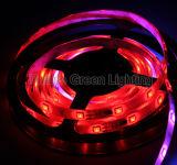 Luz de tira mágica del LED, tira del RGB LED de la magia