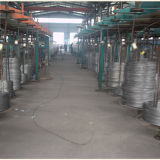 Гальванизированная/цинком покрынная веревочка стального провода