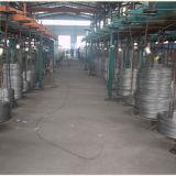 Corde galvanisée/galvanisée de fil d'acier