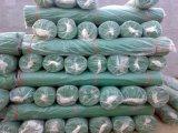 Maglia di plastica per costruzione, maglia del PE per costruzione