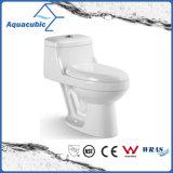 Toilette en céramique de cabinet monopièce de lavage à grande eau de salle de bains (AT2029)