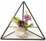 Верхняя продавая стеклянная геометрическая ваза стекла плантатора Terrarium