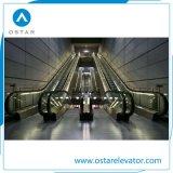 El subterráneo utilizó la escalera móvil al aire libre del pasajero de 30 grados con el mejor precio