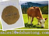 Hete verkoop-Kip Maaltijd (proteïne 65%) voor Dierlijke voer-Hete Verkoop