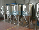 3000litres Beer Storage Tank con Dimple Jacket (ACE-FJG-3)