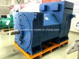 Brushless Alternator voor Lucht Gekoelde Diesel Generator