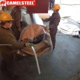 El color cubrió de acero Enrolla-PPGI el diseño de acero del modelo de flor de la bobina