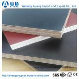 El negro/Brown/la película roja hicieron frente a la madera contrachapada para la aplicación de la construcción/de la decoración