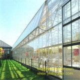 Предварительный парник цветка и овоща с системой охлаждения и панелями солнечных батарей