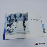 Taille A4 le 6ème forum favorable à l'environnement de Binhai montrant le magasin