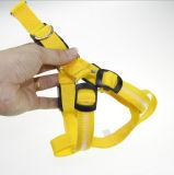 De moda encender para arriba el harness del perro del LED