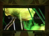 Pantalla de visualización impermeable de interior de LED de la serie P10.42mm