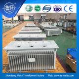 ölgeschützte Transformatoren der Verteilungs-10kv mit gewölbtem Becken