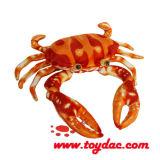 Рак красного цвета океана плюша