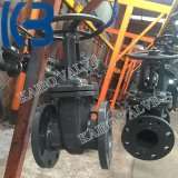 GOSTの鋳造物鋼鉄/Stainless Pn25 Dn100のゲート弁