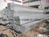 ASTM 500 Galvanized Square Steel Pipes