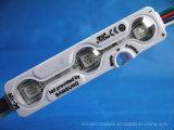 DC12V는 렌즈를 가진 IP68 5050 RGB LED 모듈을 방수 처리한다