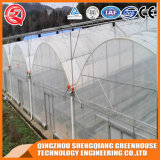 Agricultura Multi Span Indoor Growing Tent Plastic Film Green House