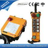 Sell quente 8 de controle remoto de rádio industriais dos sentidos 220VAC para a grua F24-8d do guindaste