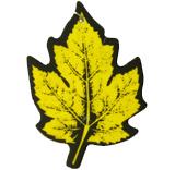 أصفر ورقة ورقة سيارة [أير فرشنر]