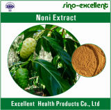 Poeder van het Uittreksel van het Fruit Noni van 100% het Natuurlijke