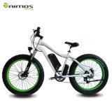 Bici de montaña eléctrica de la bicicleta eléctrica eléctrica de la bici