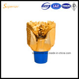 Puits Drilling de extraction forant 10 le trépan tricône de pouce TCI de 1/2