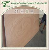 Madera contrachapada ordinaria Bintangor /Okoume hecho frente, madera contrachapada de la base del álamo