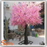 屋内装飾の小型ガラス繊維の人工的な桜の木
