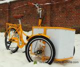 Bicicleta diferente Bakfiets da carga da cor com serviço do OEM