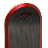 Rad 100 Hoverboard des Wind-Vagabund-10 des Zoll-einer für Erwachsenen