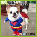 O superman veste o produto das fantasia do animal de estimação