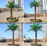 Im Freiengarten-Dekoration-Fälschungs-Dattel-Palmen