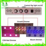 LED 5W wachsen Chip-Pflanze wachsen helle volle Spektrum-hohe Leistung LED wachsen hell für Innenpflanze