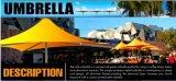 Parapluies de soleil à usage commercial à l'extérieur du café à vendre