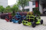 80cc New Mini Go Kart / Buggy / Cocokart Plus para criança