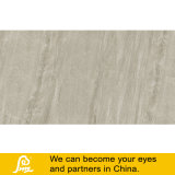 Tegel van het Porselein van het Ontwerp van het cement de Rustieke voor Vloer en Muur Bsk126107/Bsk126113 600X1200mm