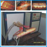 Máquina del recocido de la calefacción de inducción de Alemania Siemens IGBT